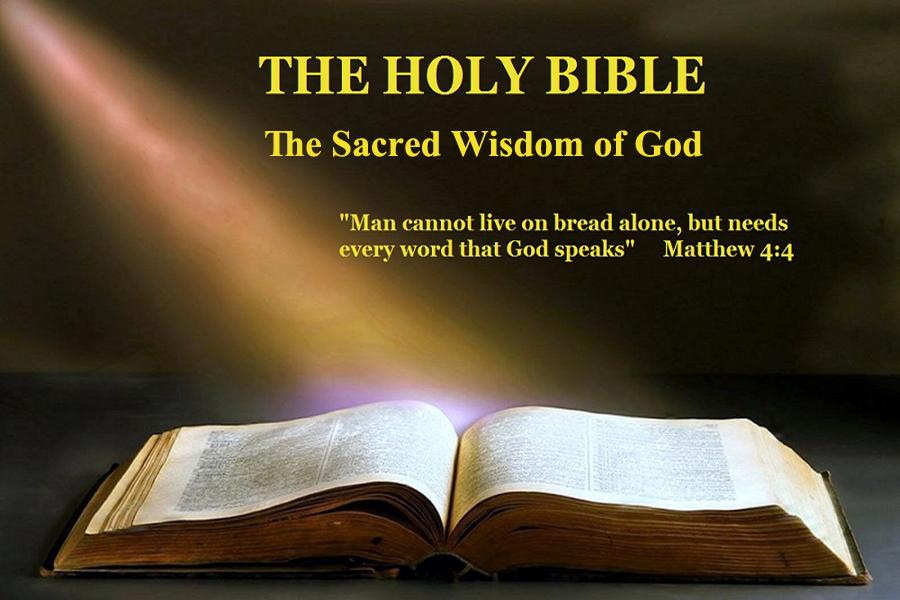Celestial Grace Bible Content Search